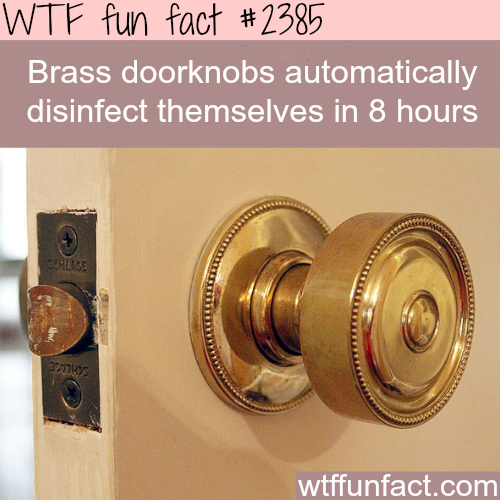 Brass doorknobs disinfect themselves -WTF funfacts