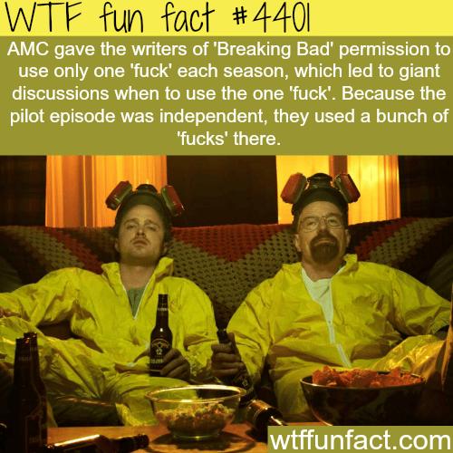 Breaking Bad -   WTF fun facts