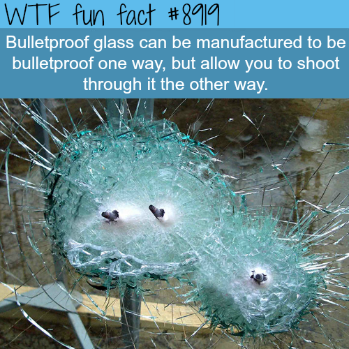 Bulletproof glass - WTF fun facts