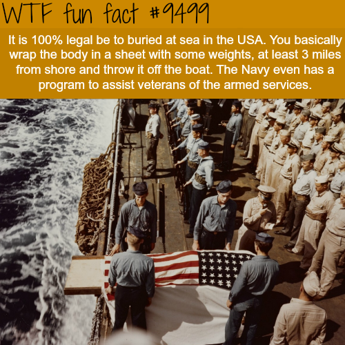 Burial at Sea - WTF Fun Fact
