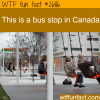 bus stop in canada