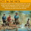 california gold rush wtf fun facts