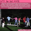 camp sundown wtf fun facts