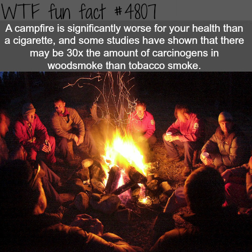 Campfires are worst for your health than cigarette? - WTF fun facts