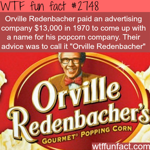 Can you believe money was wasted on this idea? - WTF fun facts