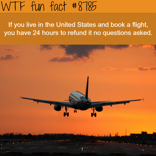 Can you cancel your airplane tickets? - WTF fun facts