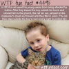cat saves his young owner from bullies wtf fun