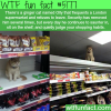 cat that sits on the shelf of supermarkets and