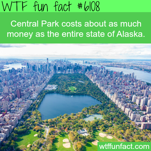 Central Park cost - WTF fun facts
