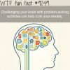 challenging your brain wtf fun facts