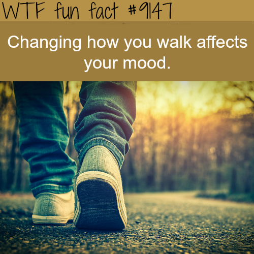 Changing how you walk affects your mood - WTF Fun Facts