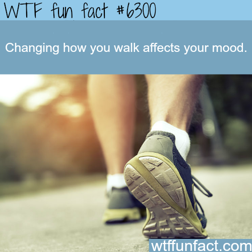Changing the way you walk  - WTF fun facts