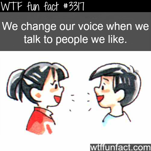 Changing voice when talking to people you like -WTF fun facts