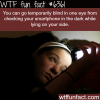 checking your phone at night wtf fun facts