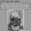 cheddar man wtf fun facts