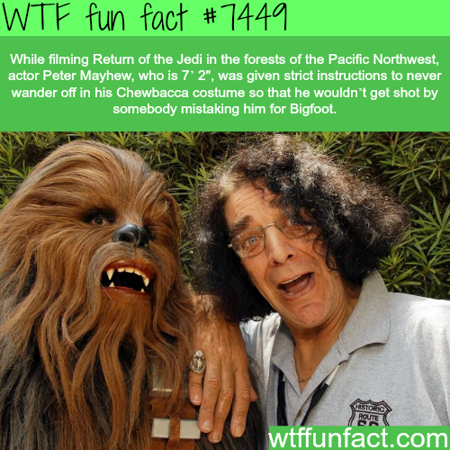 Chewbacca - Facts