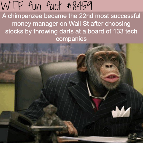 Chimpanzee is more successful at selecting stocks than most Wall St traders- WTF fun facts