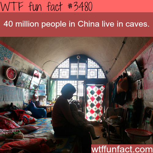 China cave homes - WTF fun facts