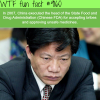china executed the head of chinese fda wtf fun
