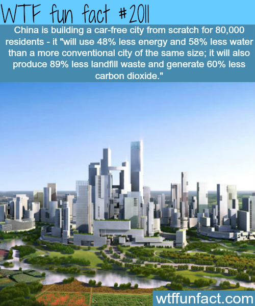 China is building a car-free city -WTF fun facts
