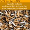 cigarette butts wtf fun fact