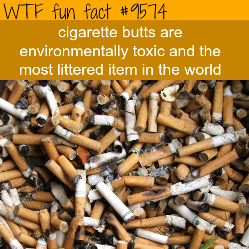 Cigarette butts - WTF fun fact