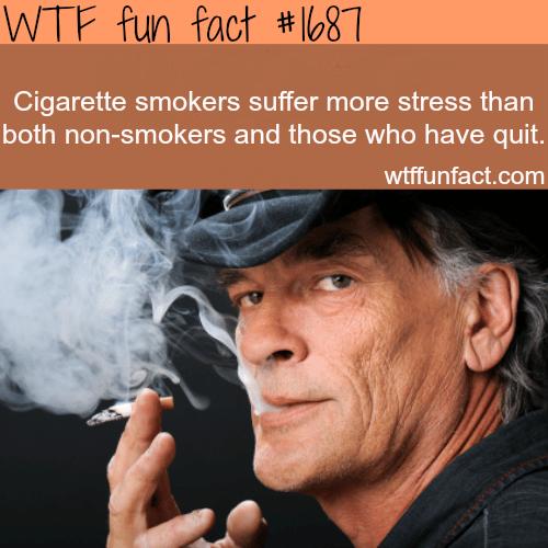 Cigarette smokers suffer more stress -WTF fun facts