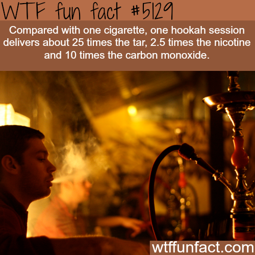 Cigarette smoking vs hookah - WTF fun facts