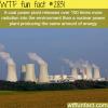 coal power plant vs nuclear power