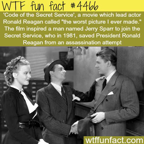 Code of Secret Service -   WTF fun facts