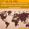 coffee wtf fun fact