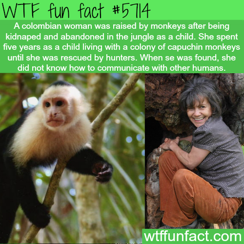 Colombian women raised by capuchin monkeys - WTF fun facts