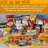 colorados snack thief wtf fun facts