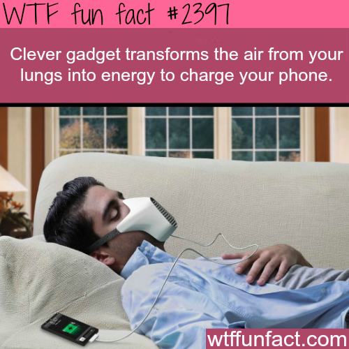 Coolest Phone Gadget - WTF fun facts