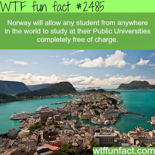 Countries with free education - WTF fun facts