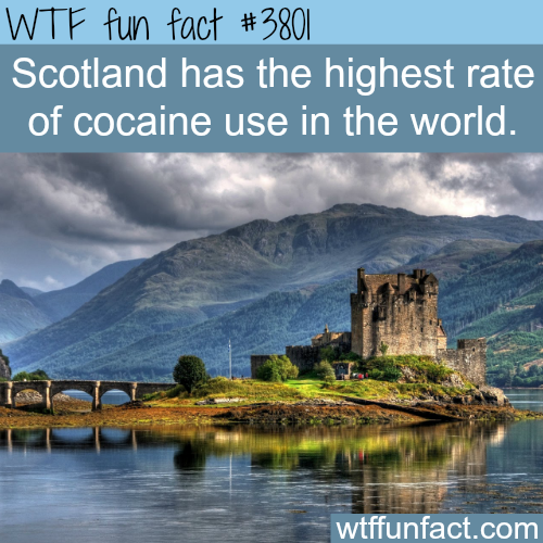 Countries with the highest rate of cocaine use - WTF fun facts