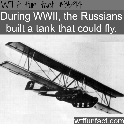 Crazy facts about Russia -  WTF fun facts