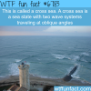 cross sea wtf fun fact