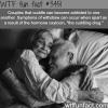 cuddling can be addicting