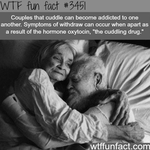 Cuddling can be addicting - WTF fun facts