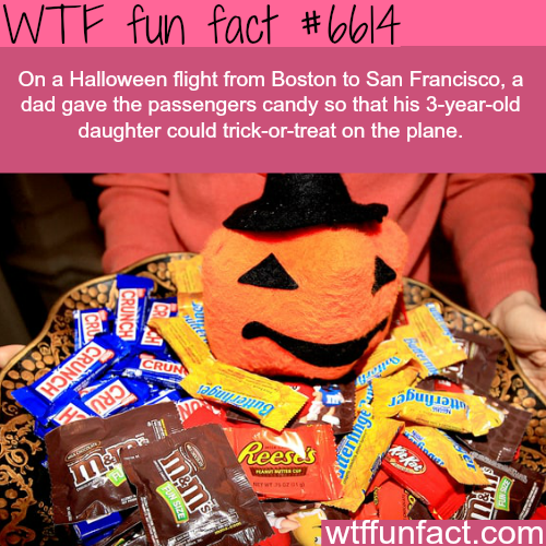 Dad of the year - WTF fun facts