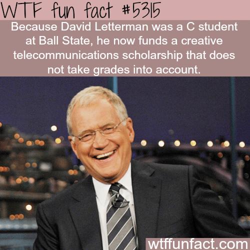 David Letterman - WTF fun facts
