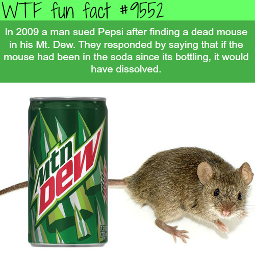 Dead mouse in a Mountain Dew - WTF fun fact