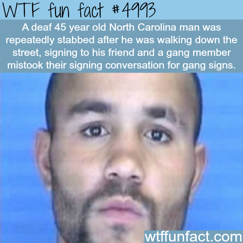 Deaf man gets stabbed in North Carolina - WTF fun facts