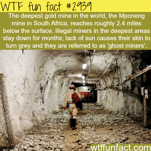 Deepest gold mine in the world -  WTF fun facts