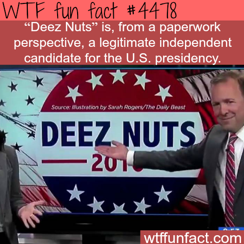 Deez Nuts for president -   WTF fun facts