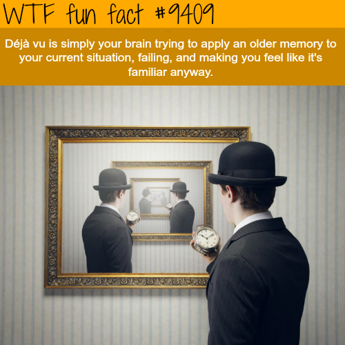 Deja Vu - WTF fun facts