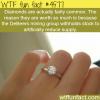 diamonds are not rare wtf fun facts