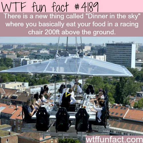 Dinner in the sky -  WTF fun facts