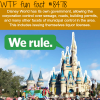 disney world has its own government wtf fun